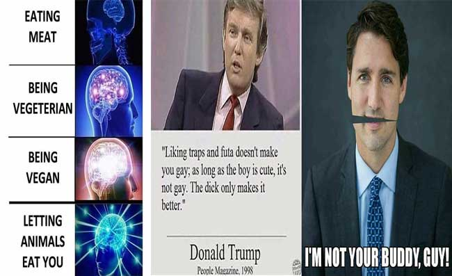 Friday Memes 1 and 2